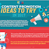 Infographic - 6 Content Promotion Ideas to get your content VIRAL