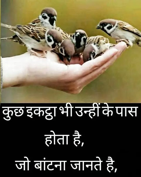 Hindi-Poetry-Status-Quotes