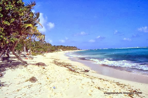 Marie Galante, Pccole Antille Francesi