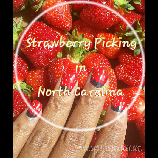 Strawberry Picking in North Carolina: Ingram Farms | A Polished Mother
