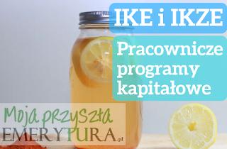 Pracownicze programy kapitałowe IKE i IKZE