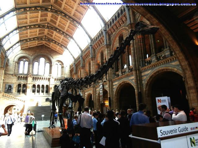 Patio principal del interior del Museo de Historia Natural de Londres.