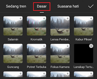 choose basic effect category