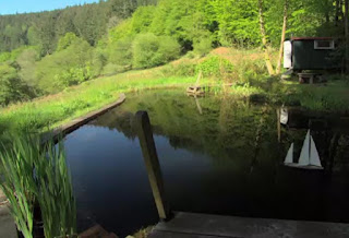 The pond at Nant Y Bedd