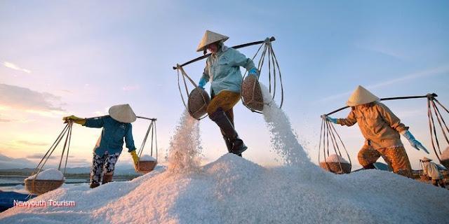 The salt fields near Van Phong Bay, Khanh Hoa province 2
