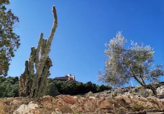 Castillo de Sagunto.