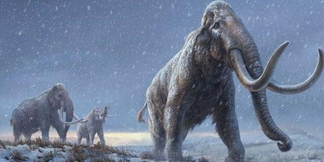 Σιβηρία: Βρέθηκε το αρχαιότερο DNA στον κόσμο σε απομεινάρια μαμούθ