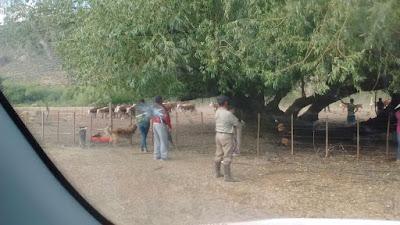 Resultado de imagen para Litigio de tierras en Arroyo Las Minas