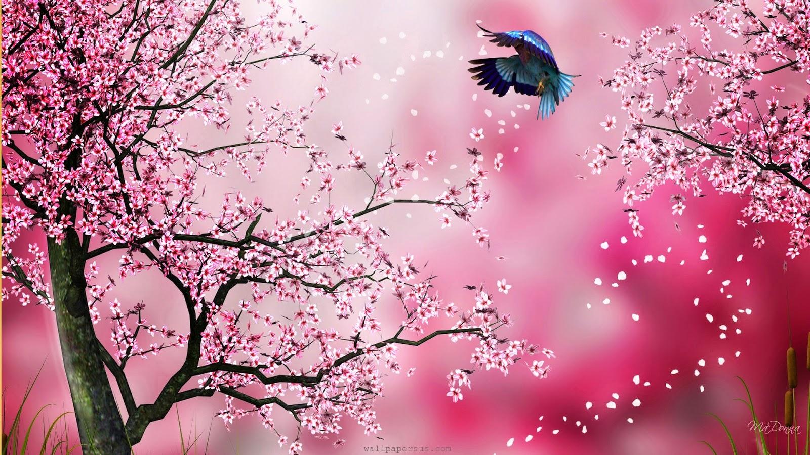 A la luz de la luna. - Página 3 CerezoJapanese-Sakura-Cherry-Blossompiccolor.com_