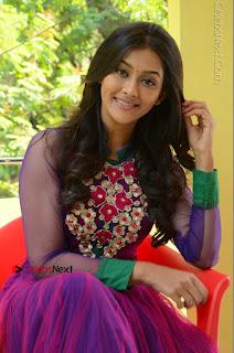 Actress Pooja Jhaveri Latest Stills in Purple Salwar Kameezt at Dwaraka Success Meet  0190.JPG