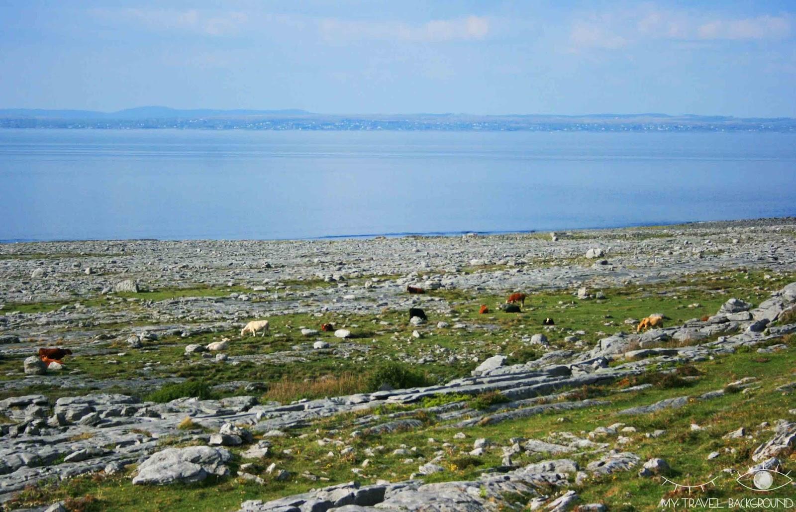 My Travel Background : le Plateau de Burren