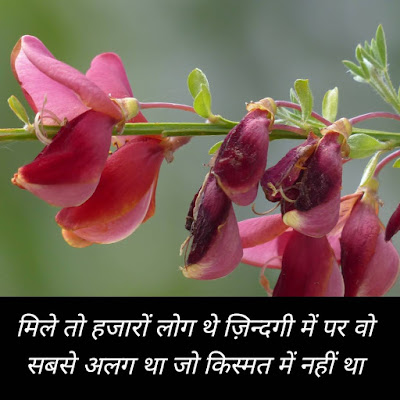 Best Dard Bhari Shayari in Hindi ideas with images -2021