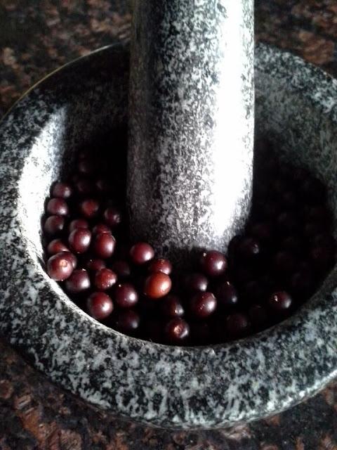 jars of hackberries making hackberry milk and energy bars