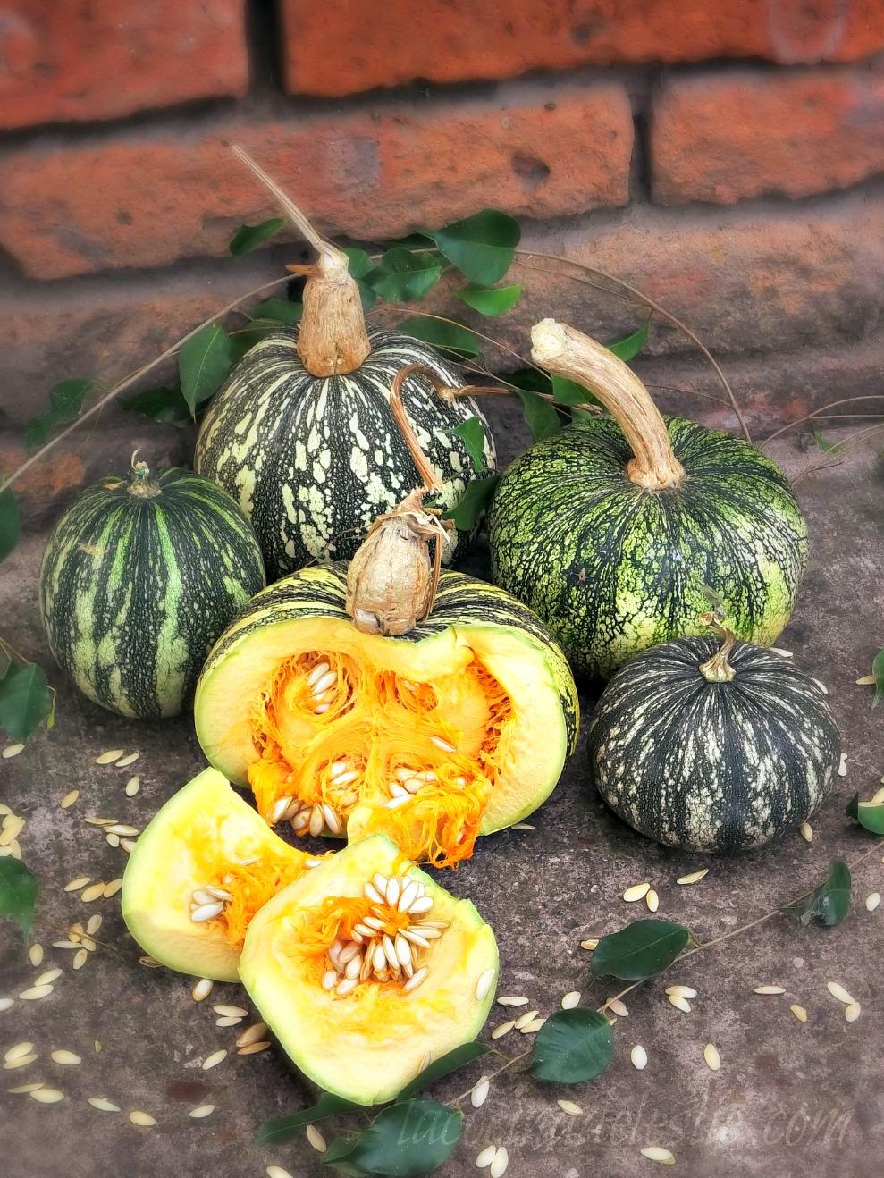 Pumpkin 101: How to Make Homemade Pumpkin Puree, Calabaza ...