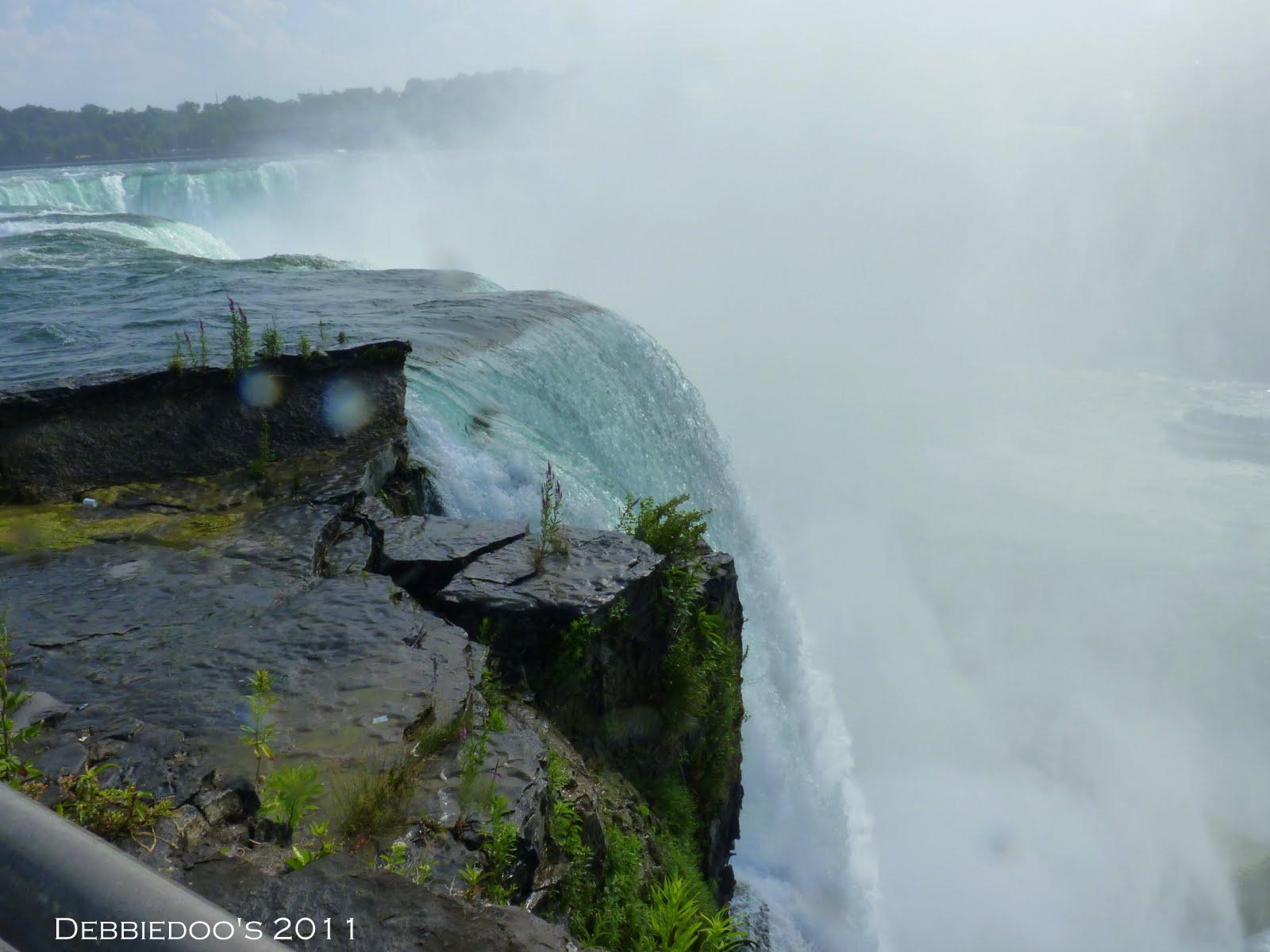 Sex ofensores Niagara Falls ny