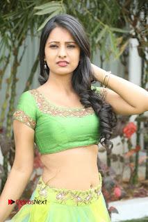 Actress Nikitha Bisht Stills in Lehenga Choli at Pochampally Ikat Art Mela Launch  0293.JPG