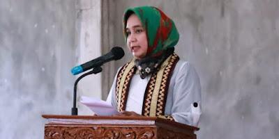 Gubernur Lampung Lakukan Kunjungan Kerja Ke Kabupaten Way Kanan