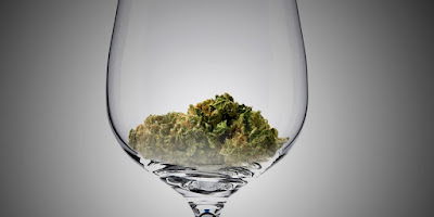 A bud of cannabis at the bottom of a wine glass
