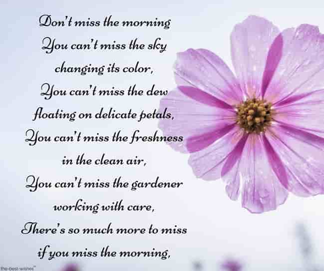 long good morning sms for love