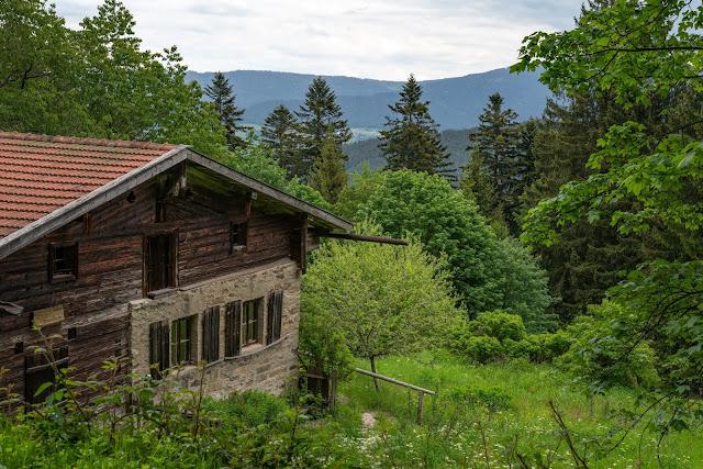 Kaitersberg Panoramaweg Ar06 | Wandern im Lamer Winkel im Bayerischen Wald 05