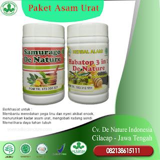 Obat asam urat pegal linu encok herbal alami