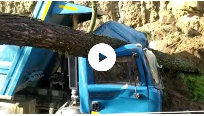 आसमानी आफत से जूझ रहा पहाड़ कहीं सड़क बंद तो कहीं गिरे पेड़-देखें वीडियो में