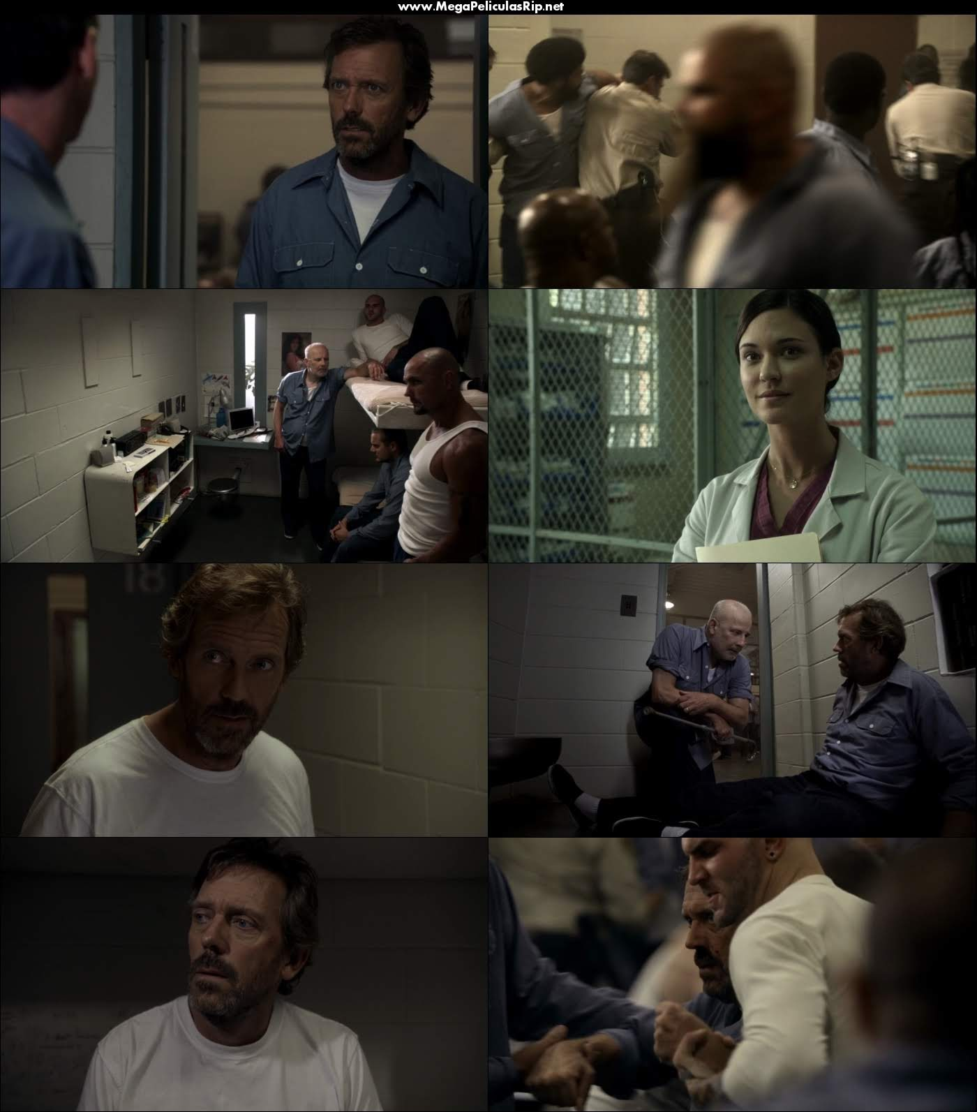 Dr House Temporada 8 720p Latino