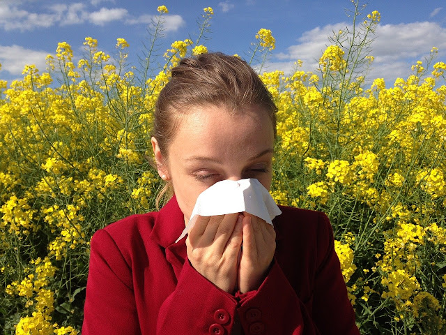 An introduction to what allergies are and how they can be diagnosed by use of a home blood test kit.