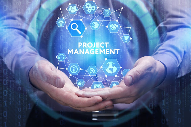 Special Topics in Project Management