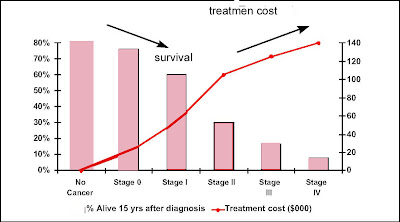 Mesothelioma Lung Cancer Survival Rate