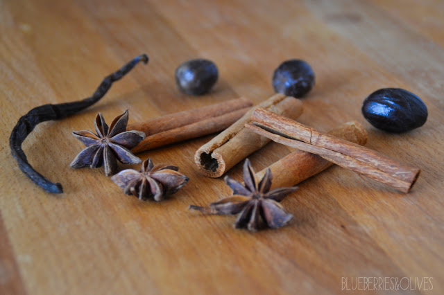 STAR ANISE, CINAMMON STICKS AND VANILLA POD - SPICED HOT CHOCOLATE