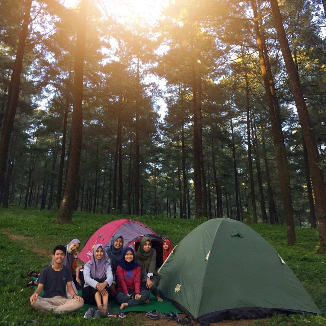 Camping di Hutan Pinus Limpakuwus Banyumas