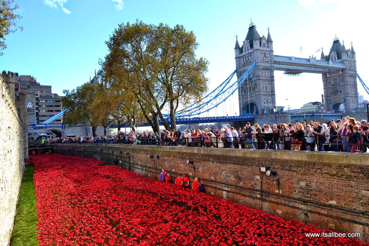 A Historical Exhibition | Tower Of London Poppies