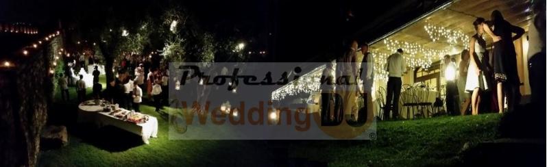Musica Per Matrimonio Country Chic : Matrimonio ecologico: musica e luci per un matrimonio country chic