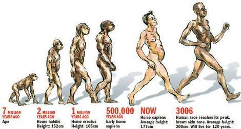Qúa trình tiến hoá hàng triệu năm