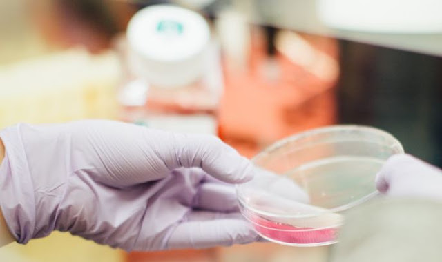 indications send employee for dot drug testing