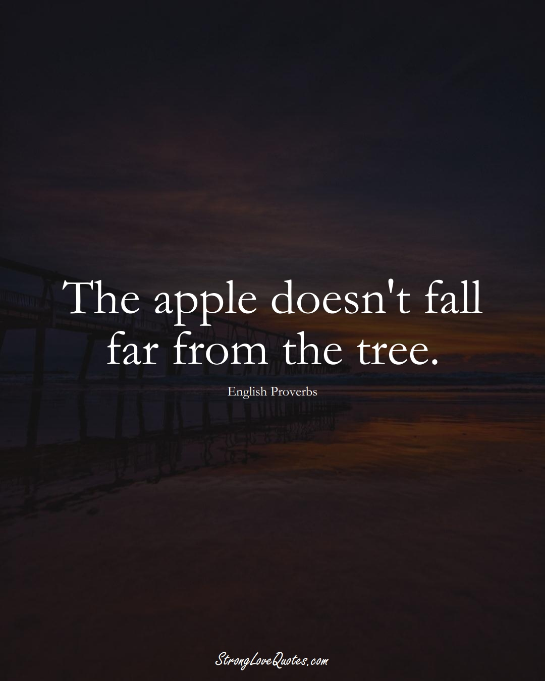 The apple doesn't fall far from the tree. (English Sayings);  #EuropeanSayings