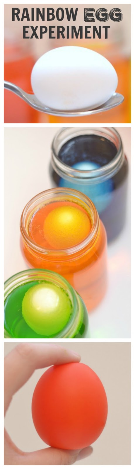 RAINBOW EGG EXPERIMENT: one of the coolest experiments for kids ever! You won't believe your eyes!