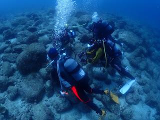 2021年4月30日の柏島ダイビング