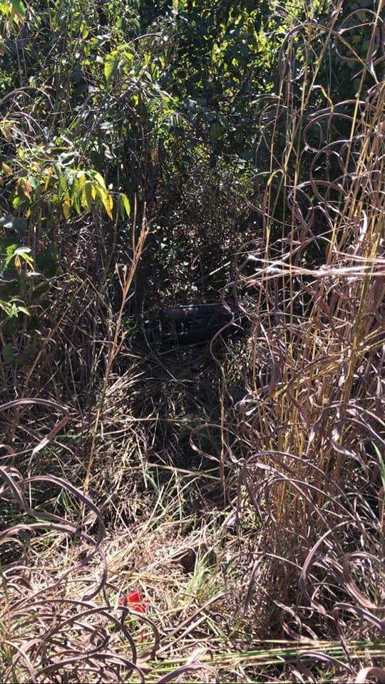 Corpo em estado avançado de decomposição é encontrado na MT-240 próximo a Nova Marilândia