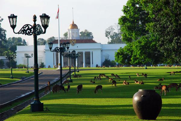 Pemandangan depan Istana Bogor yang sungguh asri dan menawan
