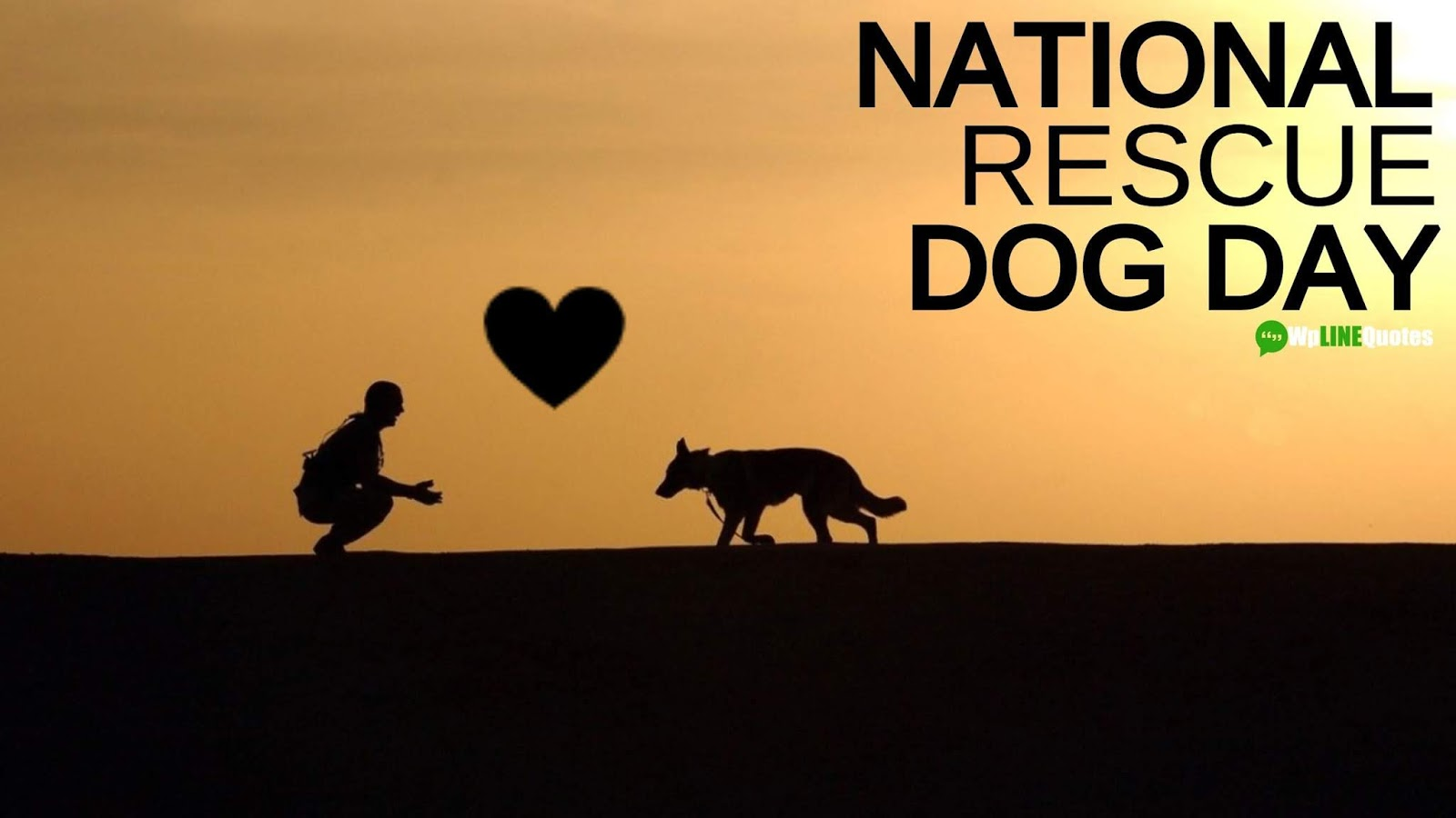 National Rescue Dog Day Quotes, Sayings & Images