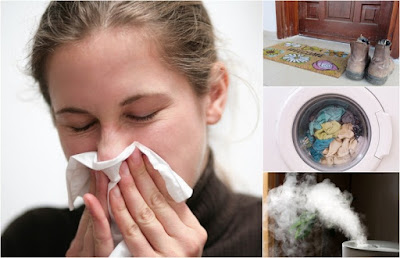 12 Ways To Naturally Flu-Proof Every Spot In Your Home