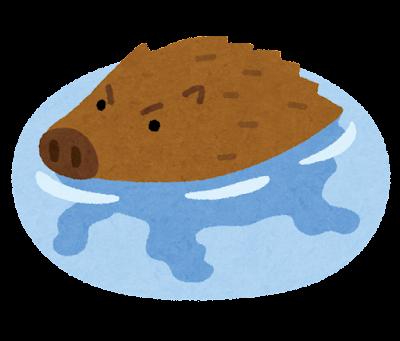 泳ぐイノシシのイラスト