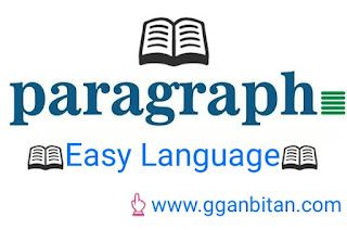 paragraph in english
