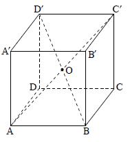 קובייה 'ABCDA'B'C'D , האלכסונים 'AC ו- 'BD חוצים זה את זה בנקודה O