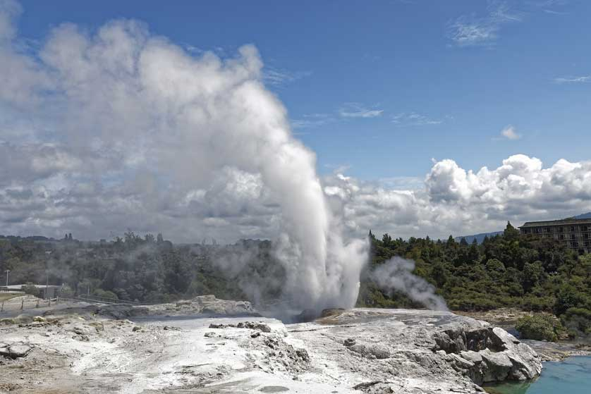 Pohutu is the largest geyser in New Zealand.