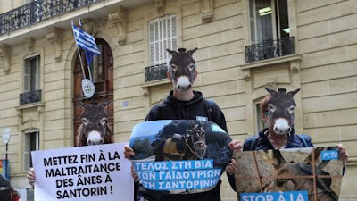 petitions-Dimos_Santorinis_Ypoyrgeio_Toyrismoy_Gaidoyrakia_tis_Santorinis_Stop_stin_ekmetalleysi