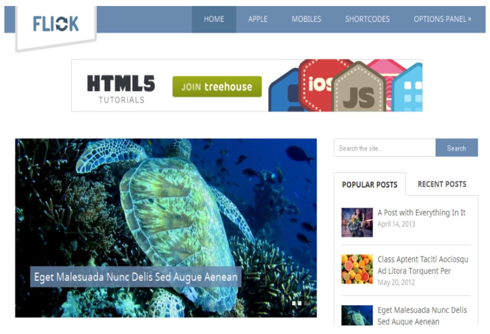 Flick WordPress Theme