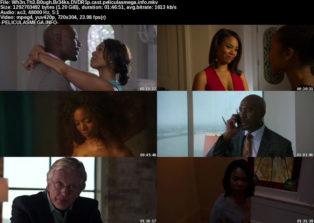 Descargar When the Bough Breaks Castellano por MEGA.